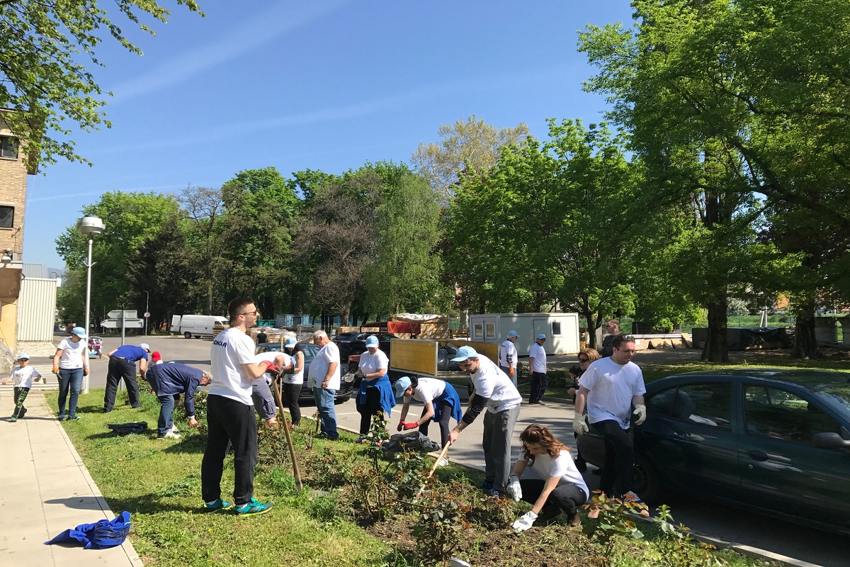 Volunteering for Earth Day